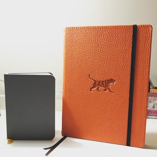 Baron Fig Confidant pocket och Dingbats* Tiger anteckningsbok i orange